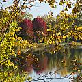 Lake Winona Autumn 15 by John Brueske