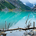 Lake With Canadian Rockies by Panoramic Images