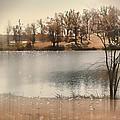 Lakes Edge by Bonnie Willis