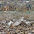 Lakeshore Rocks 4 by Lydia Holly