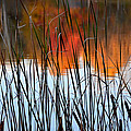 Lakeside Tales by Andrea Platt