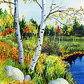 Lakeside Birches by Hailey E Herrera
