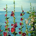 Lakeside Hollyhocks by Judy Fischer Walton