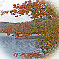 Lakeside In The Fall by Patricia Taylor