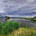 Lakeside by Ivan Slosar