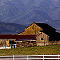 Lakeville Barn by Bill Gallagher