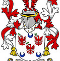 Lally Coat Of Arms Irish by Heraldry