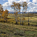 Lamar Valley In The Fall - Yellowstone by Belinda Greb
