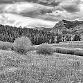 Lamar Valley Looking Towards Specimen Ridge Bw- Yellowstone by Belinda Greb