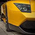 Lamborghini - Front View by James Woody