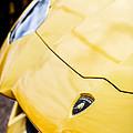 Lamborghini Hood Emblem -1661c by Jill Reger