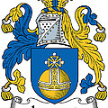 Lamont Coat Of Arms Irish by Heraldry