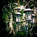 Lamp Post by Bill Howard