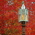 Lamp Post In Fall by Rodney Lee Williams