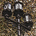 Lamp Post In The Fall by T C Hoffman