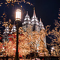 Lamp Post Slc Temple by La Rae  Roberts