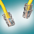 Lan Cable Close Up by Shaun Wilkinson