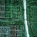 Land Of Idyllic Beauty by Zhou Chengzhou