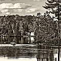 Land Of Lakes Sepia by Steve Harrington
