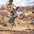 Landing by Roy Pedersen