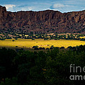 Landscape 22 E Los Alamos Nm by Otri Park