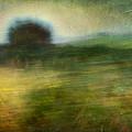Landscape #24. Paper Dreams by Alfredo Gonzalez