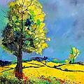 Landscape 563160 by Pol Ledent