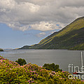 Landscape Around Killary Harbour by John Shaw
