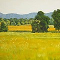 landscape art print oil painting for sale Fields by Diane Jorstad