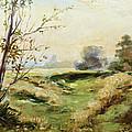 Landscape by Irek Szelag