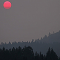British Columbia On Fire by Peggy Collins