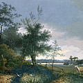 Landscape With A Fox Chasing Geese by Joseph August Knip