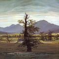Landscape With Solitary Tree by Caspar David Friedrich