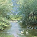 Landscape With Swans by Guido Bertarelli