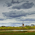 Landscape With The Dezwaan Dutch Windmill On Windmill Island In Holland Michigan by Randall Nyhof