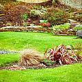 Landscaped Garden by Tom Gowanlock