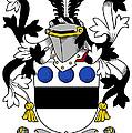 Langley Coat Of Arms Irish by Heraldry