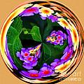 Lantana Orb by Jeff McJunkin