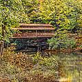 Lanterman Falls Covered Bridge by Dale Kincaid
