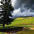 Lanty's Tarn On A Stormy Afternoon by Louise Heusinkveld