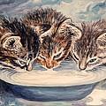 Lap Of Luxury Kittens by Linda Mears