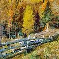 Larches In Autumn by Dragica  Micki Fortuna