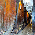 Large Barrels At Korbel Winery In Russian River Valley-ca by Ruth Hager