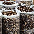 Large Sacks With Dried Mushrooms by Yali Shi