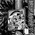 Las Vegas Sticker Sign by Angus Hooper Iii