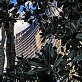 Las Vegas - Wynn Hotel by Jon Berghoff