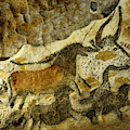 Lascaux Cave Painting by Jean Paul Ferrero and Jean Michel Labat