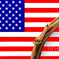 Lasso And American Flag by Olivier Le Queinec