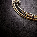 Lasso On Leather by Olivier Le Queinec