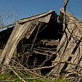 Last Gasp Of An Old Barn Streetman Texas by Trace Ready